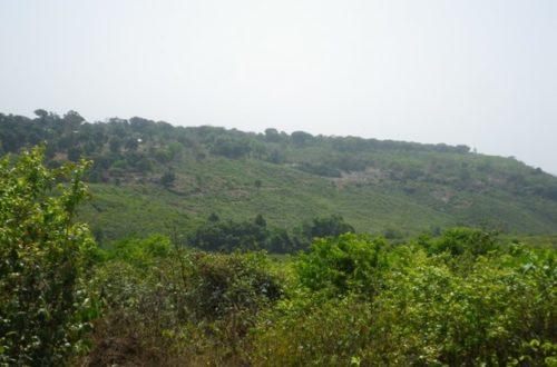 Article : Pétoye : SOS pour un village assoiffé !