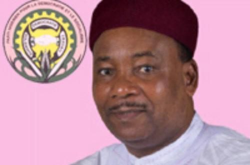 Article : L'initiative « 3N » au Niger, un programme ambitieux