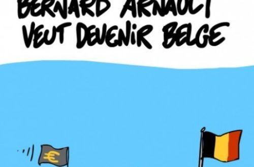 Article : Bernard Arnault, deviens camerounais, c'est tout bénef' !