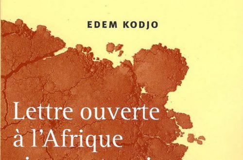 Article : Indignez-vous, Africains, avec Edem Kodzo !