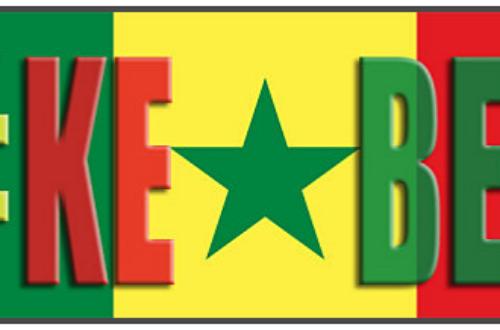 Article : Sunucause : La mission humanitaire de la Twittosphère Sénégalaise
