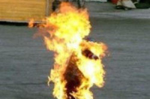 Article : Saint Bouazizi et les mille imbéciles