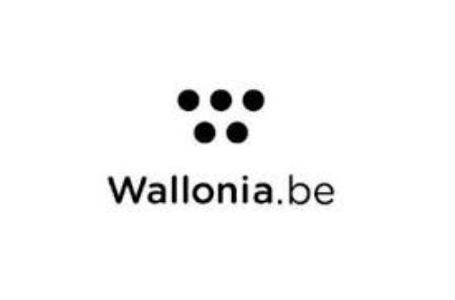 Article : Un logo à prix d'or pour Wallonia.be