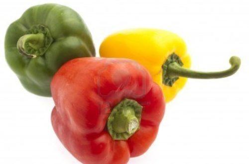 Article : Ode au piment camerounais