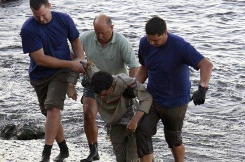 Article : Lampedusa, l'hécatombe : quelques témoignages