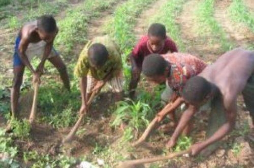 Article : Le travail des enfants, une autre réalité au Bénin