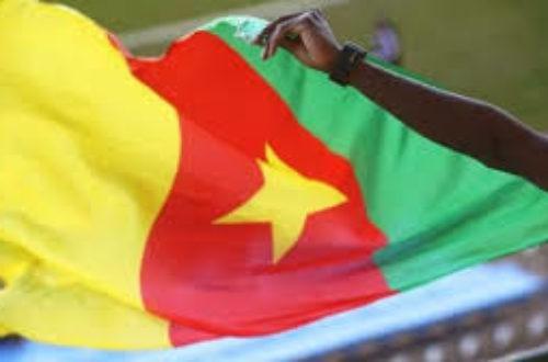 Article : Cameroun : la République à feu et à sac