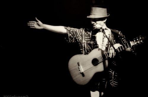 Article : Fortuné troubadour