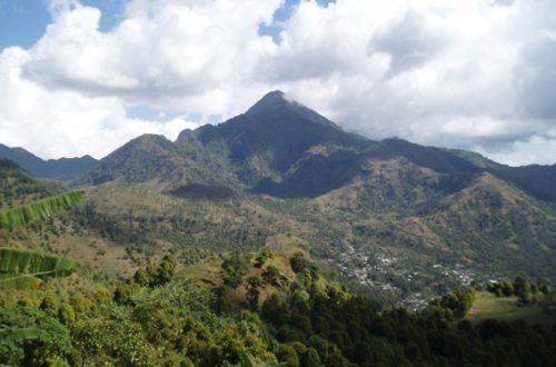 Article : Comores : les racines d'un mal commun