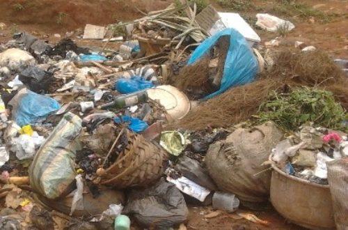 Article : À Bamenda les ordures servent de repas pour les fêtes de fin d'année