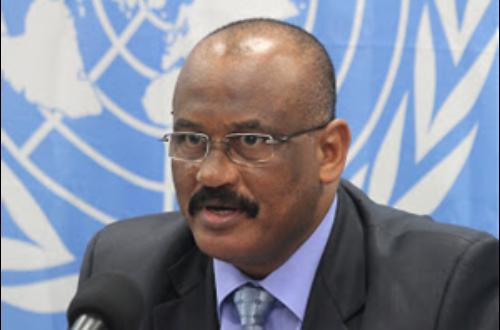 Article : La Monusco confirme la présence des éléments de la Seleka en RD Congo