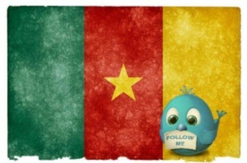 Article : La communauté Twitter au Cameroun, vous connaissez?