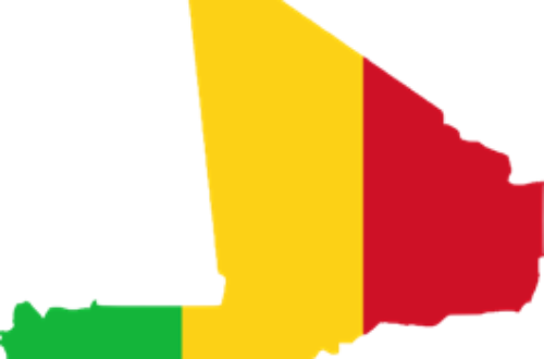 Article : Mali : pourquoi ce blackout sur nos soldats tombés au front ?