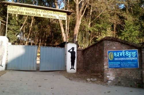 Article : Vipassana au Népal : une bande-annonce non-officielle