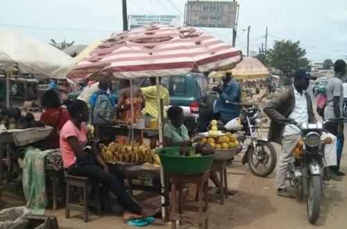 Article : Viens, je t'emmène à Douala… La vraie !