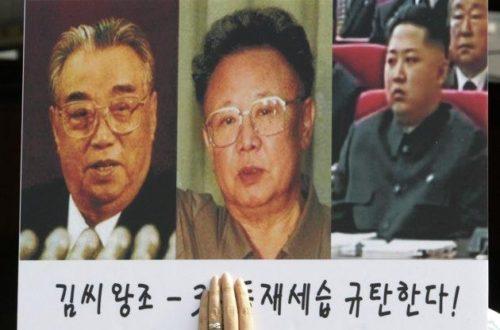 Article : La coupe Kim