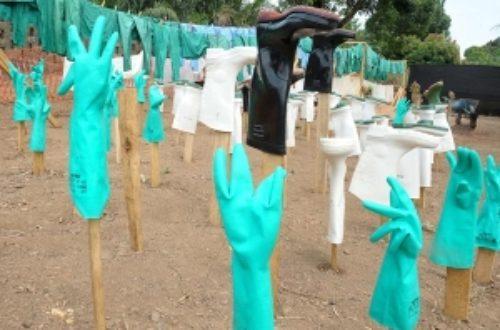 Article : C'est beau là Ebola ?