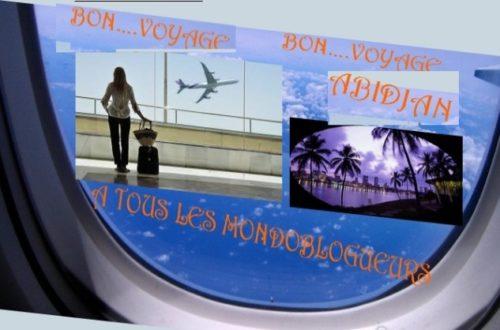 Article : Des mondoblogueurs à Abidjan ? Aïe…Aïe…, j'ai raté le coche