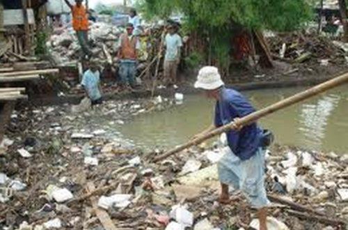 Article : Madagascar : 5 exemples de métonymie, notre cache-misère