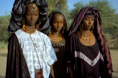 Polygamy women niger