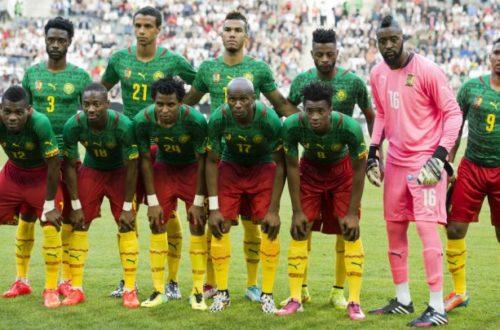 Article : Je suis un Lion indomptable, je ne pars pas au Brésil