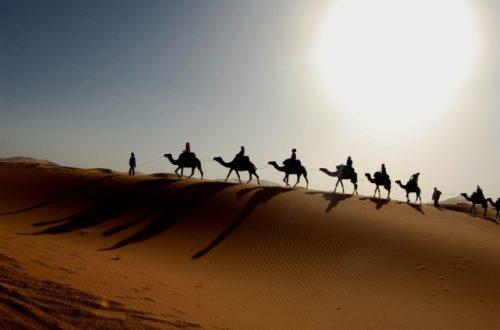 Article : Intagrist El Ansari a répondu à l'appel du désert