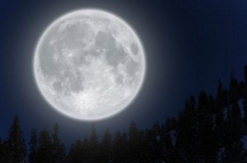 Article : Soyez dans la lune !