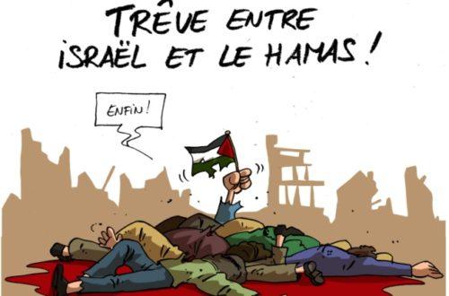 Article : Plus jamais de carnage à Gaza !