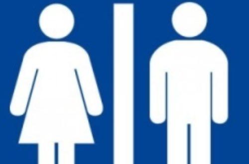 Article : Que font les filles aussi longtemps dans les toilettes ?