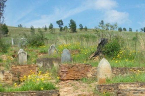 Article : L'ONG «business sans frontière» ouvre ses portes aux cimetières de Kinshasa