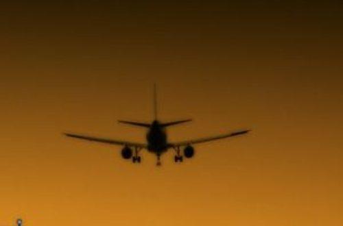 Article : Les voyages en avion