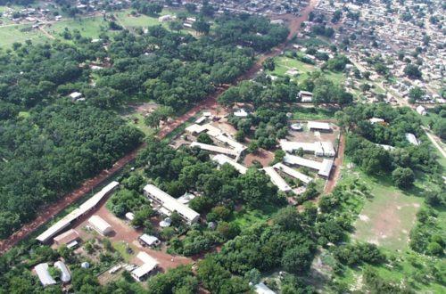 Article : Lassa, nouvelle épidémie à Tanguiéta au nord-ouest du Bénin