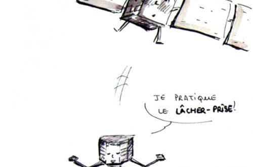 Article : Philae sur la comète