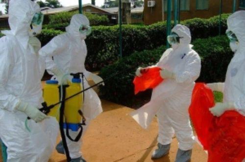 Article : Chut! RDC, Ebola n'est pas mort : plus de singe alors dans vos plats!