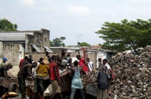 Article : Afrique : l'environnement t'attend à son chevet…