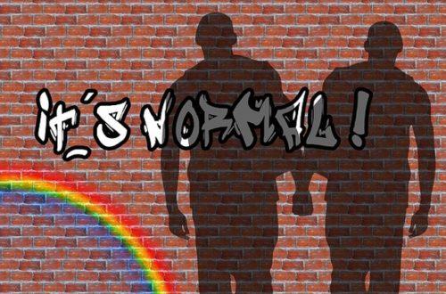 Article : Je respecte l'homosexuel qui s'assume !