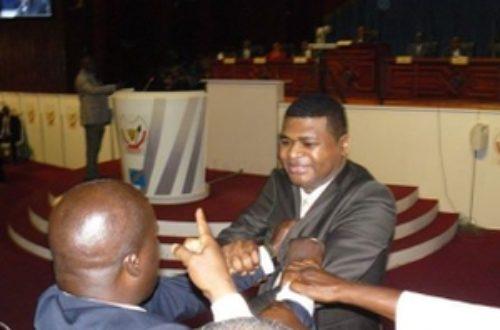 Article : L'Assemblée nationale en RDC : bazar des parle-menteurs ?