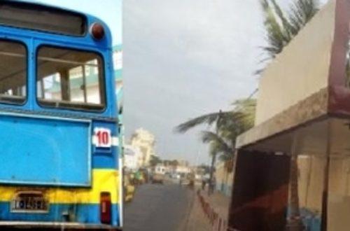 Article : Sénégal : la patrie aux couleurs du parti