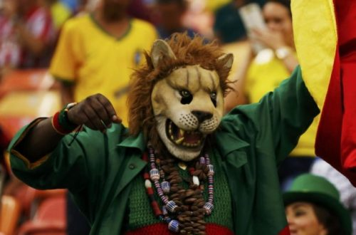Article : CAN 2015 : l'homme prudent voyait le mal des Lions