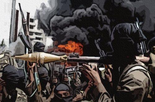 Article : La Boko Haram'isation de la société camerounaise en marche
