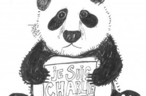 Article : Je suis (loin de) Charlie