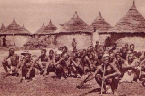 Article : La vision de certains Blancs sur l'Afrique
