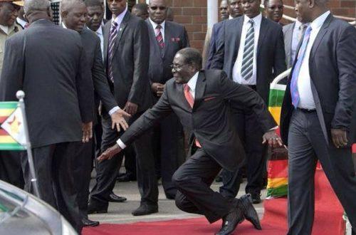Article : Ma lettre de félicitations à Robert Mugabe
