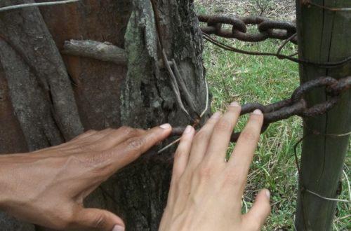 Article : L'Ile Maurice célèbre l'abolition de l'esclavage : oui, mais…