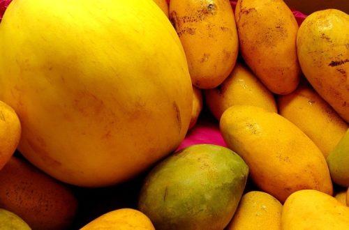 Article : À Dar es salam, c'est la période des mangues