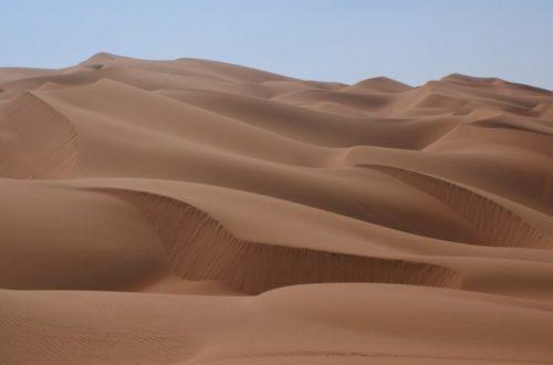 Article : Les maîtres du sable
