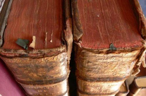 Article : MAJ – Petit lexique ivoirien