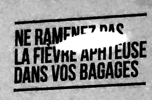 Article : L'aéroport de Paris vous souhaite la bienvenue