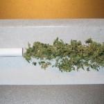 Joint non roulé