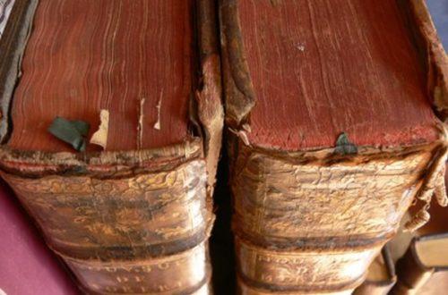 Article : Petit lexique ivoirien (2)
